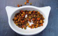 Orijen Cat foods (main information, pros/cons) - Post Thumbnail